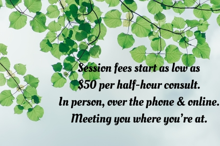 affordable low cost counselling therapy